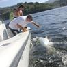Boat News