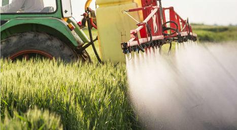 Plus d'un million de professionnels agricoles victimes des pesticides | décroissance | Scoop.it
