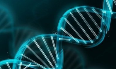 Researchers Finally Show How Mindfulness and Your Thoughts Can Induce Specific Molecular Changes To Your Genes | TruthTheory | Energy Health | Scoop.it