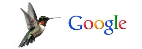 Google's HummingBird? Don't Let The Beak Fool You! | Web Talent Marketing | Investing in Florida Real Estate | Scoop.it