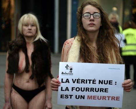 Strasbourg: des militants nus dans le froid contre la fourrure | Biodiversité | Scoop.it