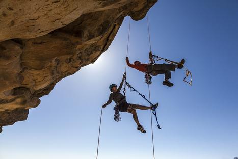 Partner or Die | Organizational Performance | Scoop.it