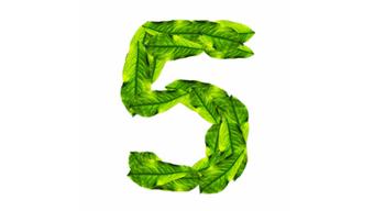 The Top 5 Anti-Inflammatory Foods You Should Eat - Foods4BetterHealth | General Topics | Scoop.it