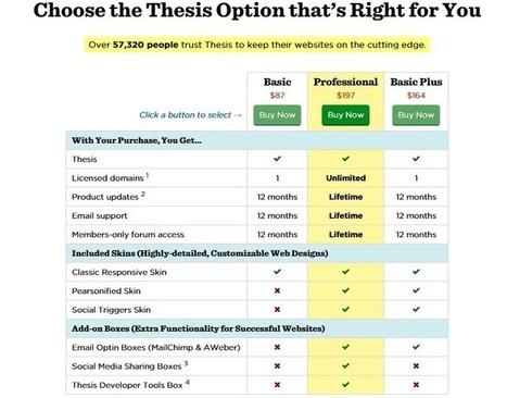 thesis theme developer option