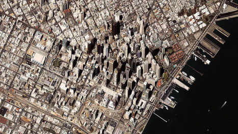 How A City Changes The Evolution Of All The Nature Around It   Sustainable Thinking   Scoop.it