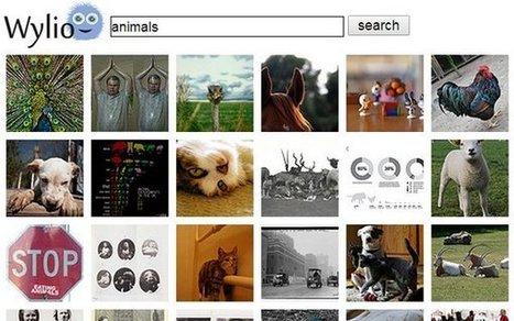 10 excelentes buscadores de imágenes libres y gratuitas (Creative Commons) | Bibliotecas Escolares do S. XXI | Scoop.it