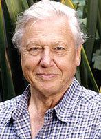 David Attenborough ~ The Life Series | Kosmisch concreet | Scoop.it