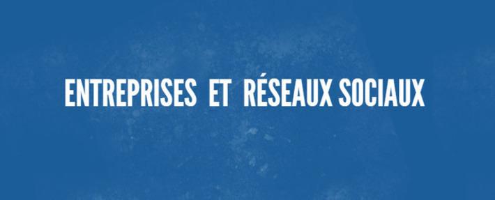 Les Entreprises françaises et les réseaux sociaux | Solutions locales | Scoop.it