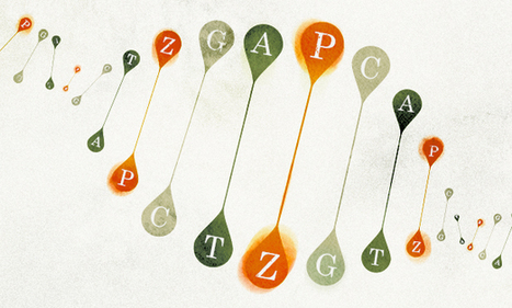 New Letters Added to the Genetic Alphabet - Quanta Magazine | Modern Agricultural Biotechnology | Scoop.it