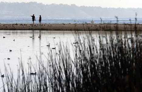 CALIFORNIA: Malibu Lagoon restoration work begins on quiet note | State parks | Scoop.it