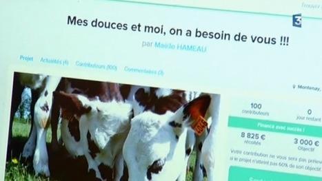 Mayenne : à Montenay, elle lance un crowdfunding pour sauver l'exploitation familiale - France 3 Pays de la Loire | Agriculture en Pays de la Loire | Scoop.it