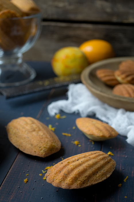 Meyer Lemon Poppyseed Madeleines | Just Chocolate!!! | Scoop.it