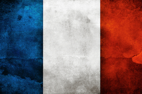 French Music Market Continues Decline | Kill The Record Industry | Scoop.it