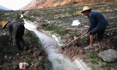 China could lose millions of hectares of farmland to pollution | The Barley Mow | Scoop.it
