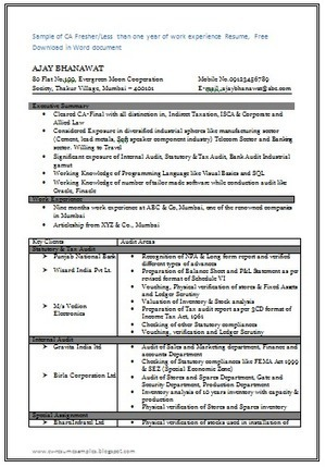 Job Resume Format For Freshers Download   Example Good Resume Template Professional Dispatcher Templates to Showcase Your Talent Professional Resume  Template