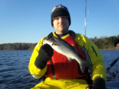 Striped Bass Grand Lake NS: November 17 | nskayakfisher | Nova Scotia Fishing | Scoop.it