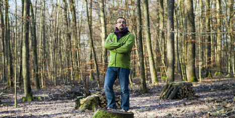Claude Hoh: «Le temps de la forêt s'étend sur plusieurs générations d'hommes» | Confidences Canopéennes | Scoop.it
