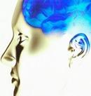 Le temps de cerveau disponible(FR) | Fonctionnement du cerveau & états de conscience avancés | Scoop.it