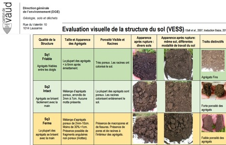 Canton de Vaud (Suisse) :documents relatifs à la protection des sols, évaluation VESS | SPATEN   Test Bêche | Scoop.it