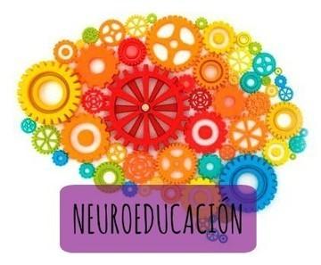 Neuroeducacion, desmontando mitos: una charla de Oriol Iborra | FOTOTECA INFANTIL | Scoop.it