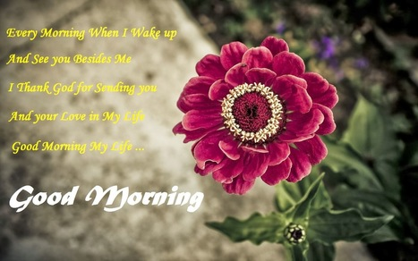 Good Morning Wishes For Friends And Family Tr