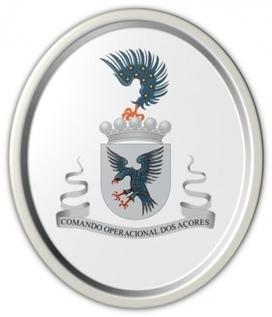 """Uaç recebe conferência sobre """"As Forças Armadas e a Proteção Civil""""   Açores   Scoop.it"""