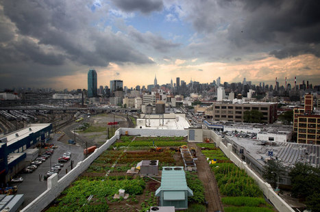 Top 5 Of The Greatest Urban Rooftop Farms — The Pop-Up City | Urban planning and sustainable mobility | Scoop.it