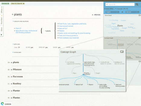 Visually explore your terminology and taxonomies!   On Terminology   Scoop.it