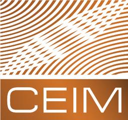 Journée de réflexion sur l'adaptation des politiques culturelles à l'ère du numérique - Institut d'études internationales de Montréal (IEIM-UQAM) | Politiques culturelles canadiennes et numérique | Scoop.it