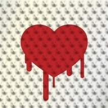 Heartbleed jabs its first victims: UK parents' site Mumsnet, Canadian tax agency | Digital-News on Scoop.it today | Scoop.it