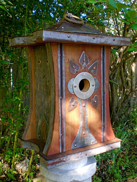 Building a Birdhouse? The size of the entrance matters. | Gardening Life | Scoop.it