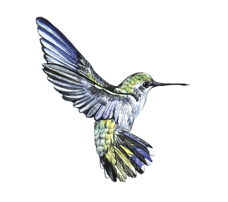 Google Hummingbird, and what it means for Online Marketers & SEO - Search Engine Journal | Social mobile and local marketing | Scoop.it