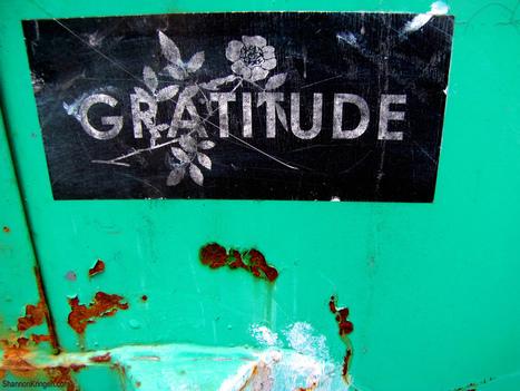 Thankful Much? | Unplug | Scoop.it