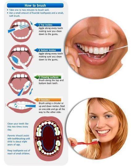 Proper Technique For Brushing Teeth Dental Hy