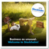 Business in Sweden