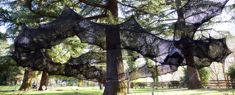 Numen/for Use: forest skyway | Art Installations, Sculpture, Contemporary Art | Scoop.it