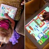 Recommended iPad Music Making Apps for Kids