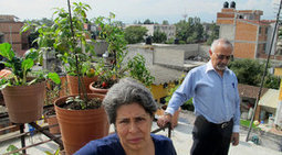 On Mexico City's flat roofs, tiny gardens help feed families, provide an urban ... - Kansas City Star | Urban planning and sustainable mobility | Scoop.it