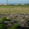 Villes vertes  green cities