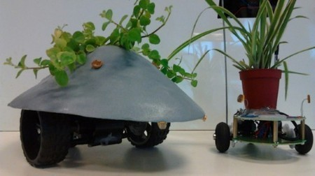 Plant Host Drone keeps plants in direct sunlight from dawn till dusk   Artificial Intelligence and Robotics   Scoop.it