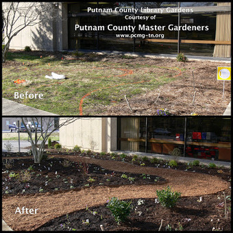 Putnam County Master Gardeners: New Garden at the Library: Master Gardeners and Putnam County Library | Tennessee Libraries | Scoop.it