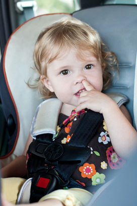 Germs - The Backseat Drivers You Don't Want in Your Car - Ask Dr. Maxwell ... | Beat Allergic Rhinitis and Allergies Naturally | Scoop.it