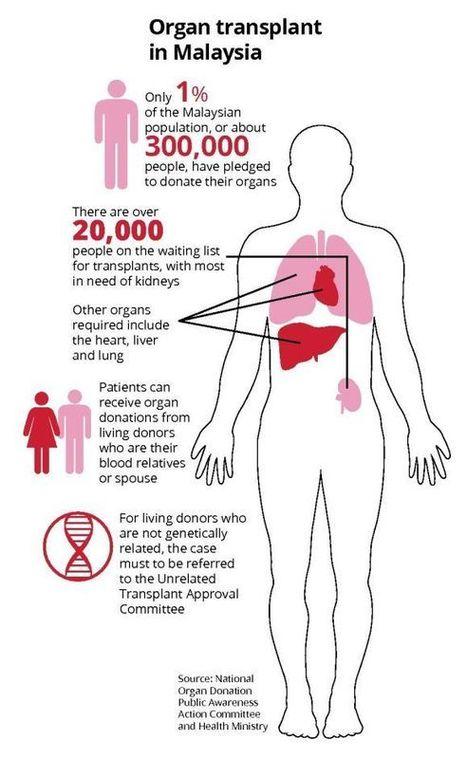 A Price Tag For Human Organs Organ Traffickin