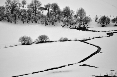 Paysage Aubrac | L'Aveyron | Scoop.it