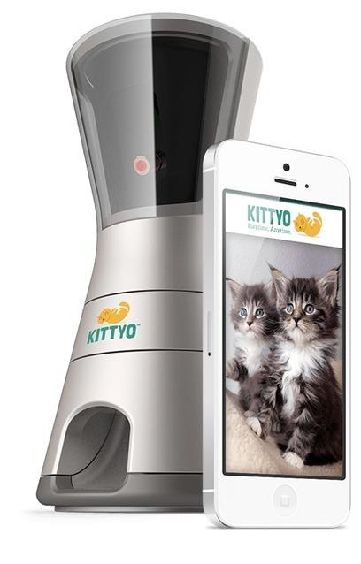 Kittyo : Parlez et jouez avec votre chat à distance | Coffee Break | Scoop.it