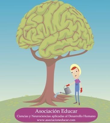 14 Consejos de Neurociencias para docentes. | Contenidos educativos digitales | Scoop.it
