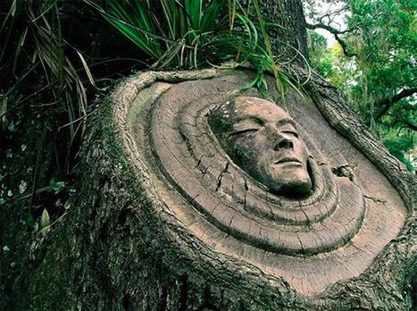 Tree Spirit Carvings by Keith Jennings   LeZart   Scoop.it