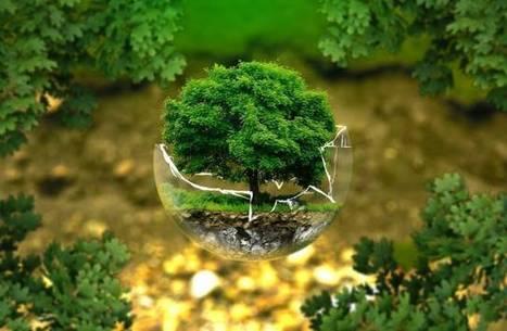 Environnement : après Lima, avant Paris / France Inter | Alternativas - Tecnologías - Reflexion - Opiniones - Economia | Scoop.it