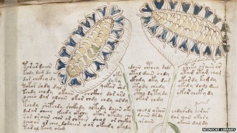 'Genuine message' in Voynich manuscript | Differently Abled and Our Glorious Gadgets | Scoop.it