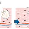 Les technologies de la Planète NANO
